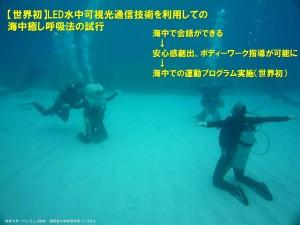座間味島での実海域脳波測定実験3