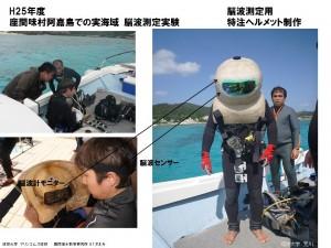 座間味島での実海域脳波測定実験