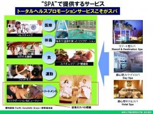 NSPA総会荒川雅志SPAはトータルヘルスプロモーション