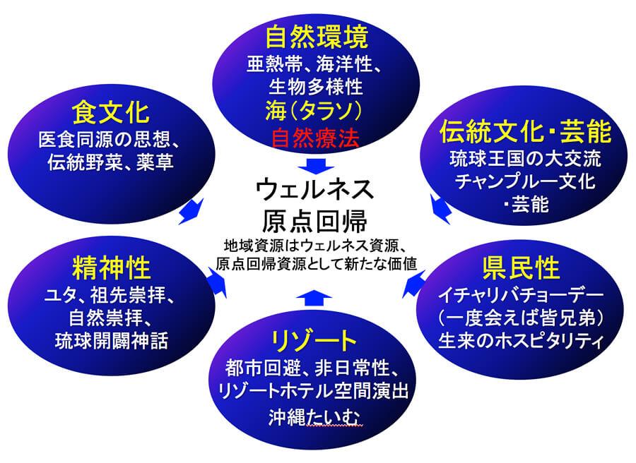 図5.あらゆる地域資源が「ウェルネス資源」、そして「原点回帰資源」へ~沖縄を例に~